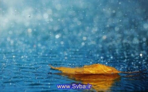 rain android live wallpaper apk  www.Svba.ir